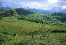 Green Valley and white mountain Abruzzo,Italy