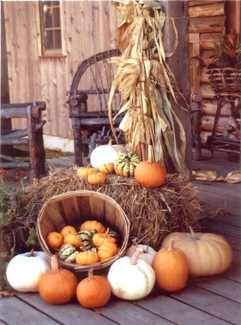 Herb Farm autumn colors
