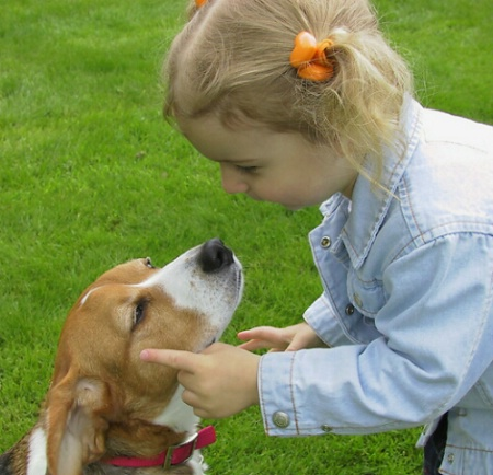 Be a nice doggy