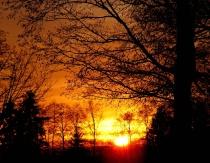 Orange Fire Sunset