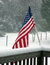 Flag in The Snow