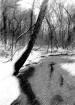 Snowy Brook in Ca...