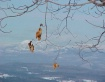 Just hanging arou...