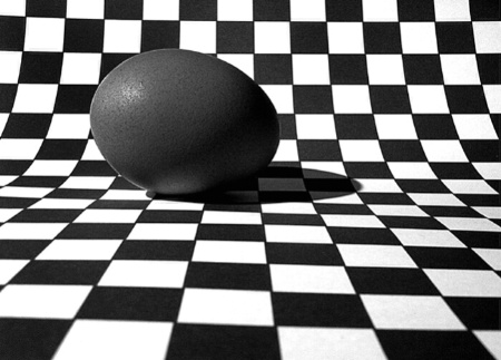 Eggsactly Abstract