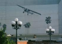 Plane & Palms 2