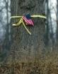 Tie  A Yellow Rib...