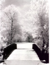 INFRARED BRIDGE