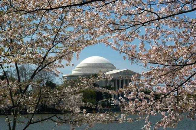 Jefferson Memorial - ID: 100247 © GARY  L. ROHRBAUGH