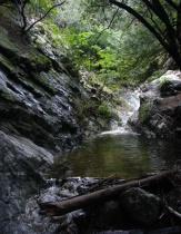 Sylvan Grotto