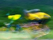 Bicycle Racers 2