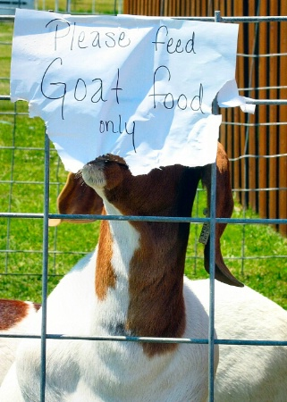 Tastes like goat food to me...