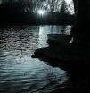 Evening @ the ...