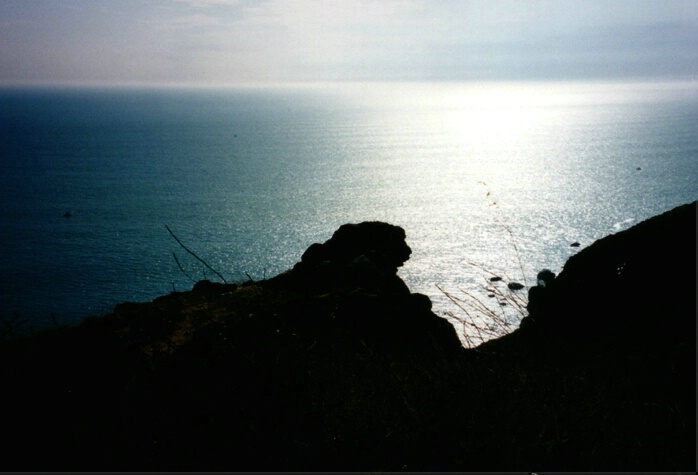 Guarding the Ocean!   - ID: 111203 © Hasmik Hatamian