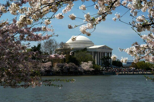 Jefferson Memorial - ID: 127669 © GARY  L. ROHRBAUGH