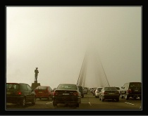 Foggy rush hour