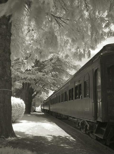 The Old Train