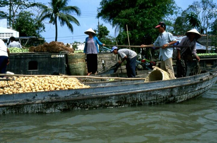 Floating Market Place - ID: 138470 © Govind p. Garg