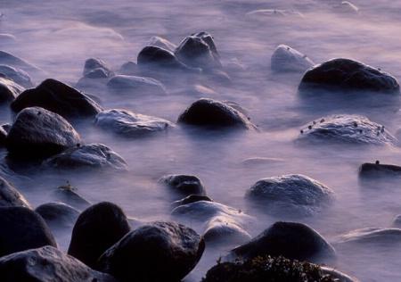 Lavender Dawn on Bay, Maine