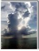Cayman rain