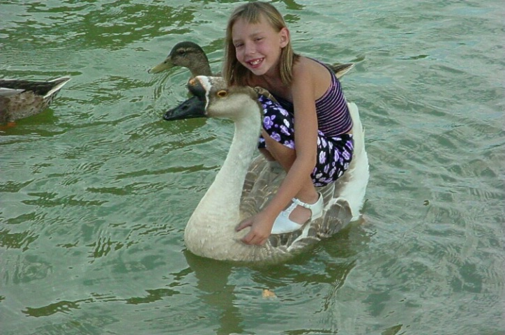Amanda and the giant goose