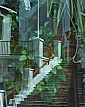 Reflection of stairway - cropped