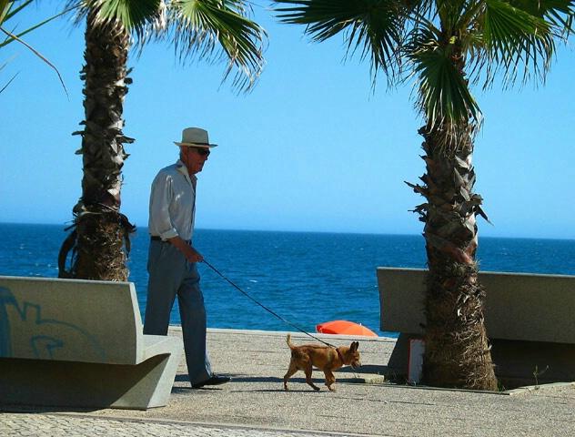 Sea-side walk