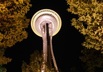 Framed Space Needle