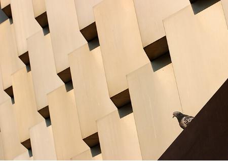 Modern Buildings lover
