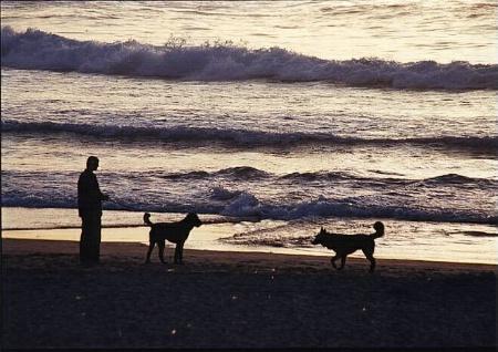 Silhouette at the beach