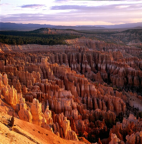 Bryce Canyon, NP, Sunrise