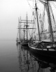 3 tall ships
