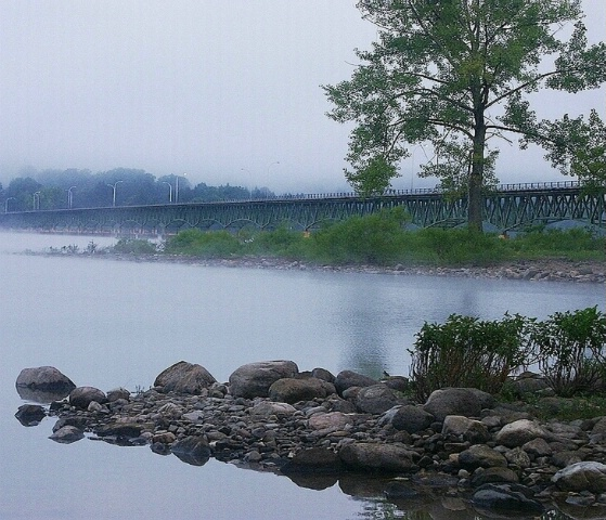 """Cool Foggy Morning..."""