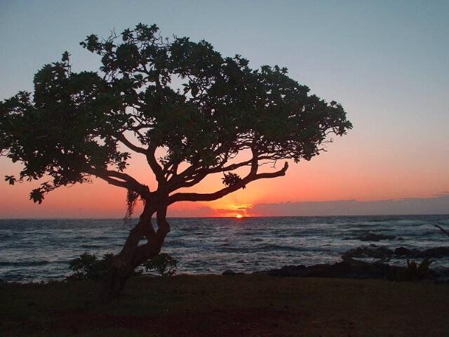 Lydgate Beach, Kauai