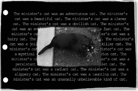 The Minister's Cat was a ________ cat.
