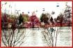 Lake Winnie Amuse...