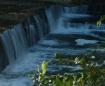 White Mills Water...