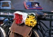 Tulips and Bicycl...