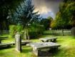 Graves at the Bol...