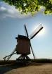Windmill in the F...