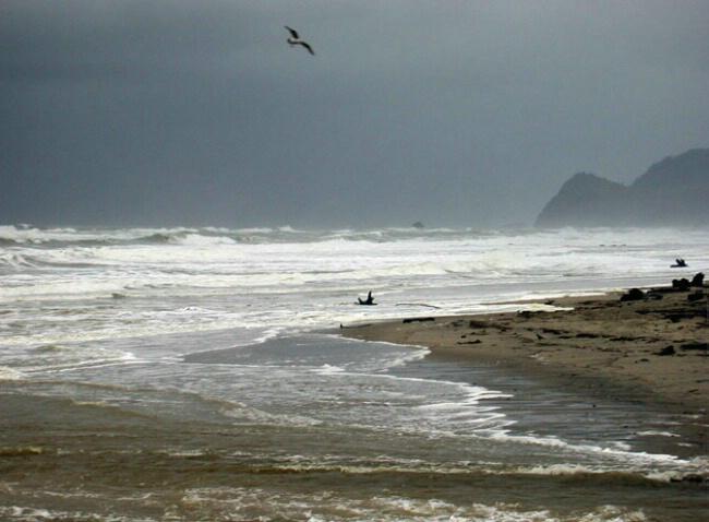 Oregon Beach Storm