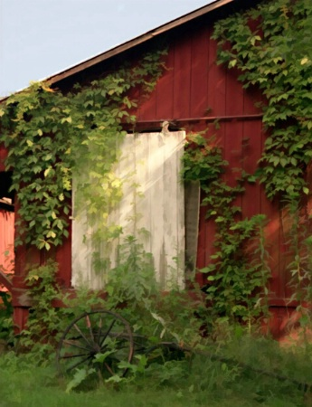 Afternoon at the Barn