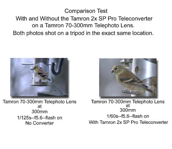 Tamron 2x SP Pro Teleconverter Comparison - ID: 235310 © Rhonda Maurer