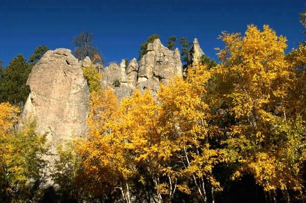 Autum in Custer State Park - ID: 235924 © GARY  L. ROHRBAUGH