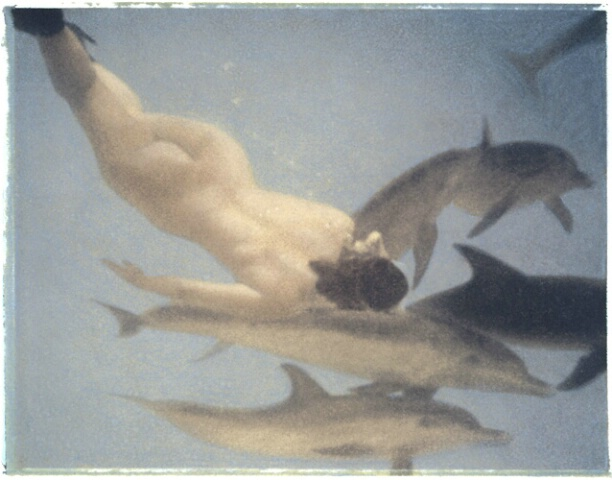Nude and Dolphins