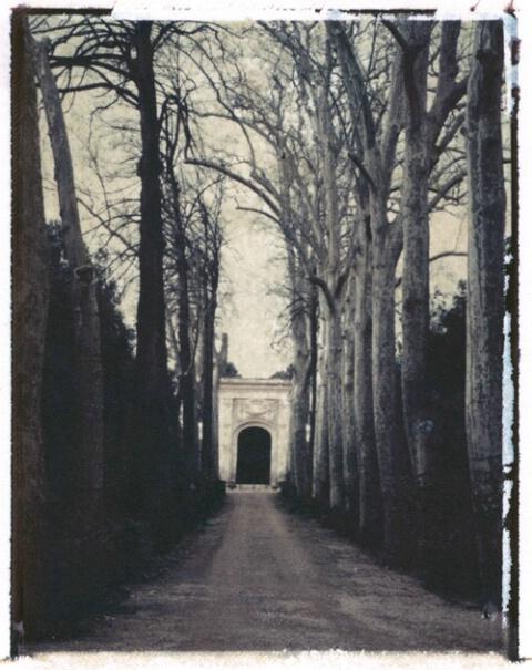 Lane, Boboli Gardens, Florence