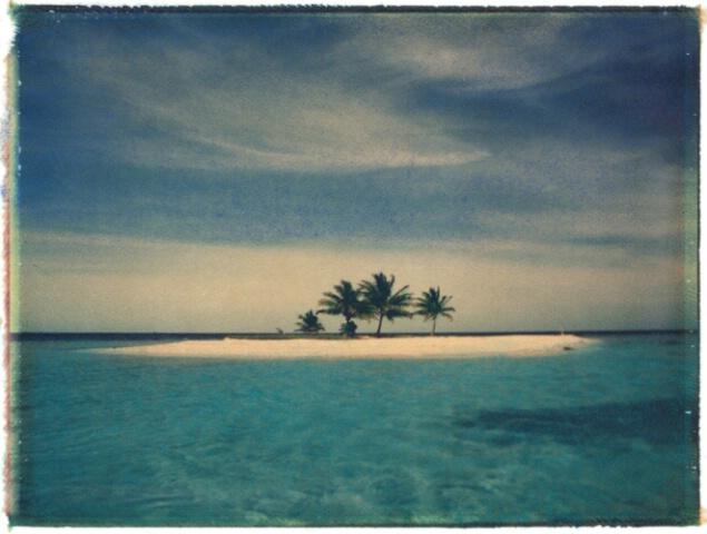 Island Paradise Image Transfer