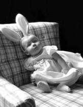 Laid Back Bunny