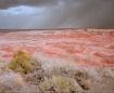 Painted Desert St...