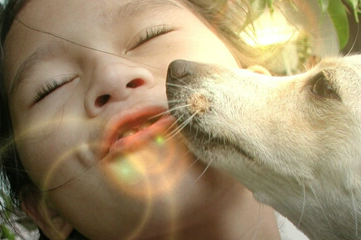 Sunny Kisses