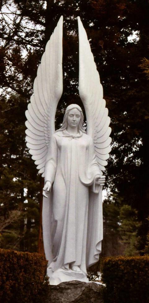 Angel in the Field